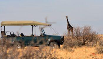 Le Botswana, la terre de prédilection du safari